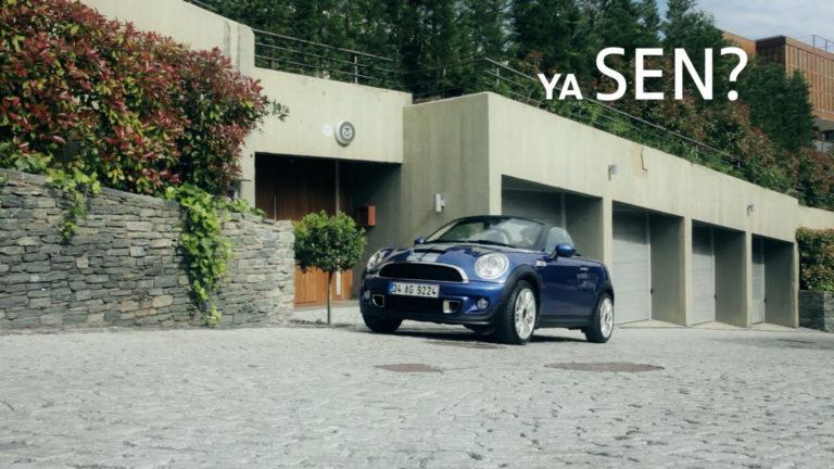 MINI Roadster, Web Reklamı